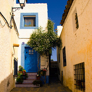 Spanish Property Bargains