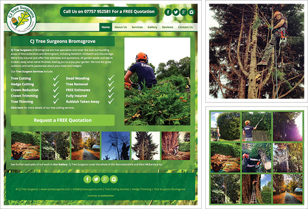 CJ Tree Surgeons Bromsgrove