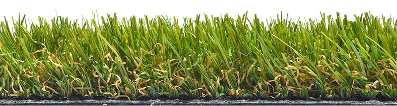Quickgrass New Grasses for 2016