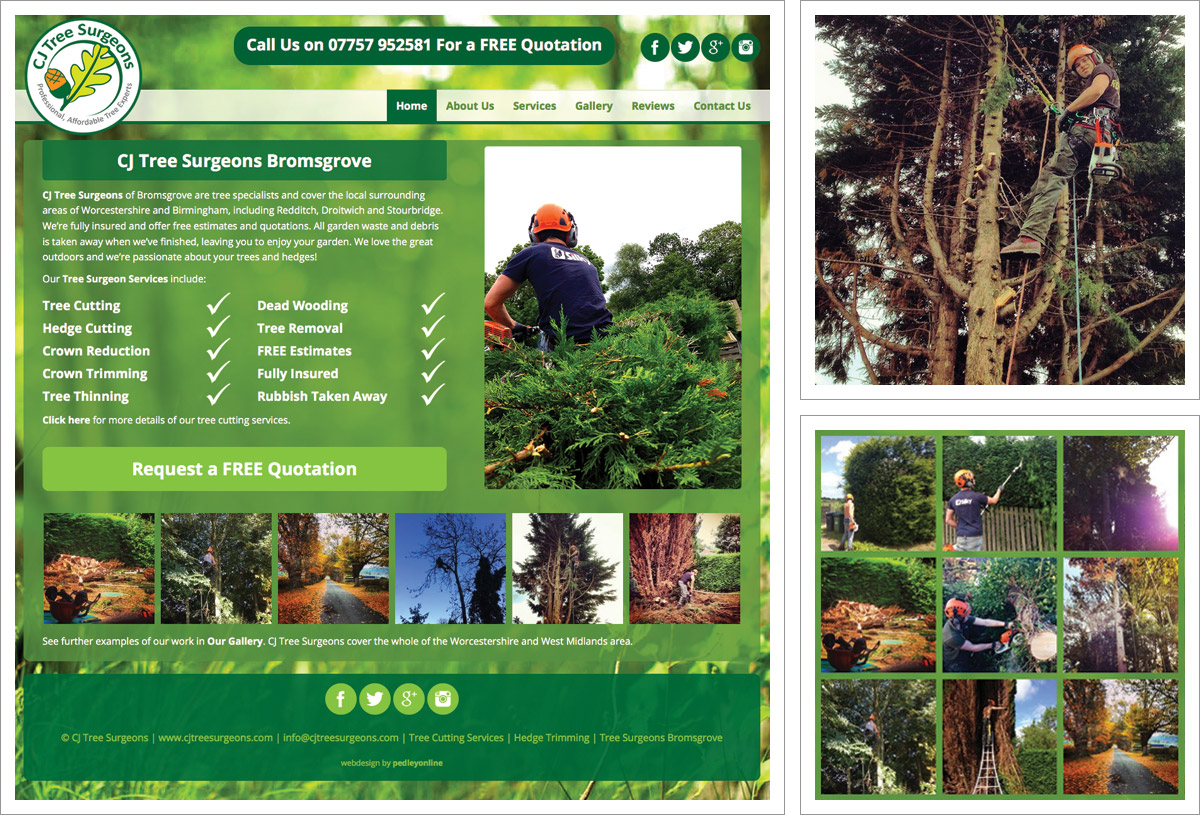 CJ Tree Surgeons Website